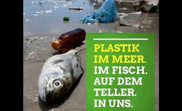 Plastik reduzieren hilft nicht nur den Meeren