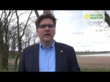 Was macht Grüne Politik aus?