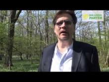 Bundesjustizminister Maas auf Irrwegen
